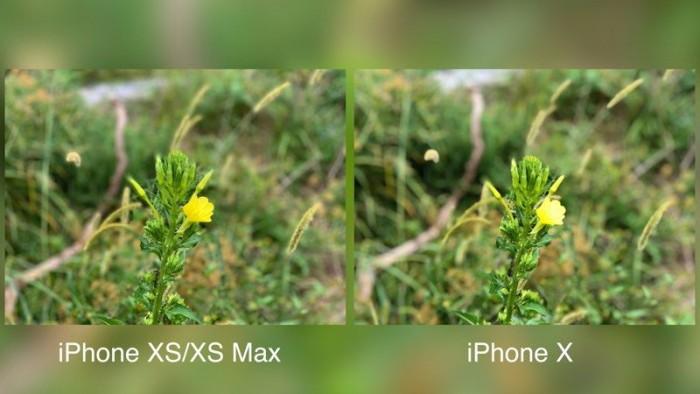 实测:iPhone XS Max和iPhone X拍照深度对比