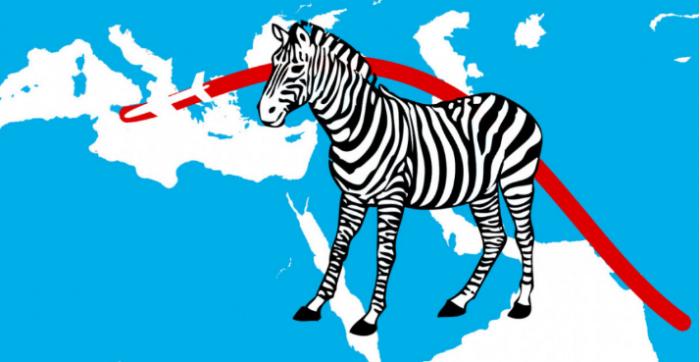 印度最大的比特币交易所转移到马耳他以逃避监管