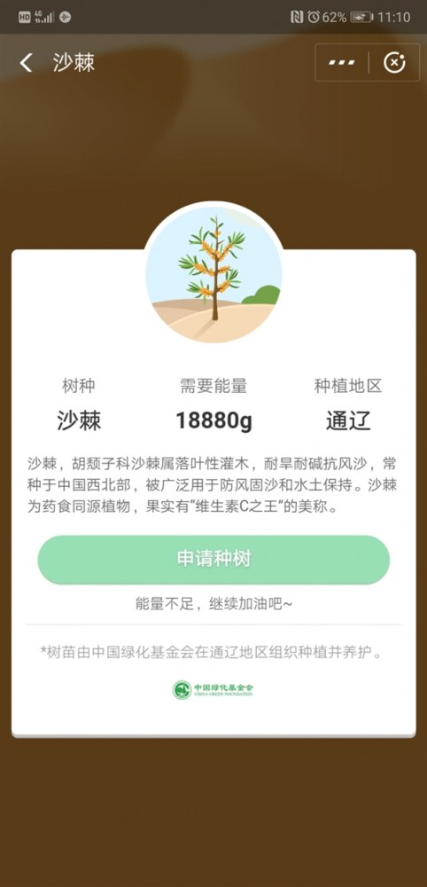 支付宝首款可以吃的蚂蚁森林上线 维生素C之王沙棘